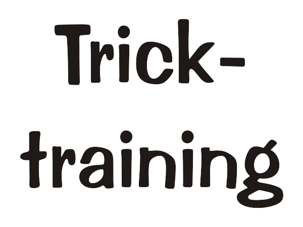 Tricktraining